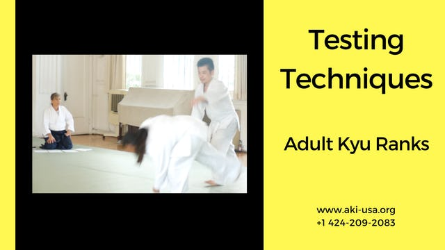 Testing Techniques: Kyu Ranks (Adults)