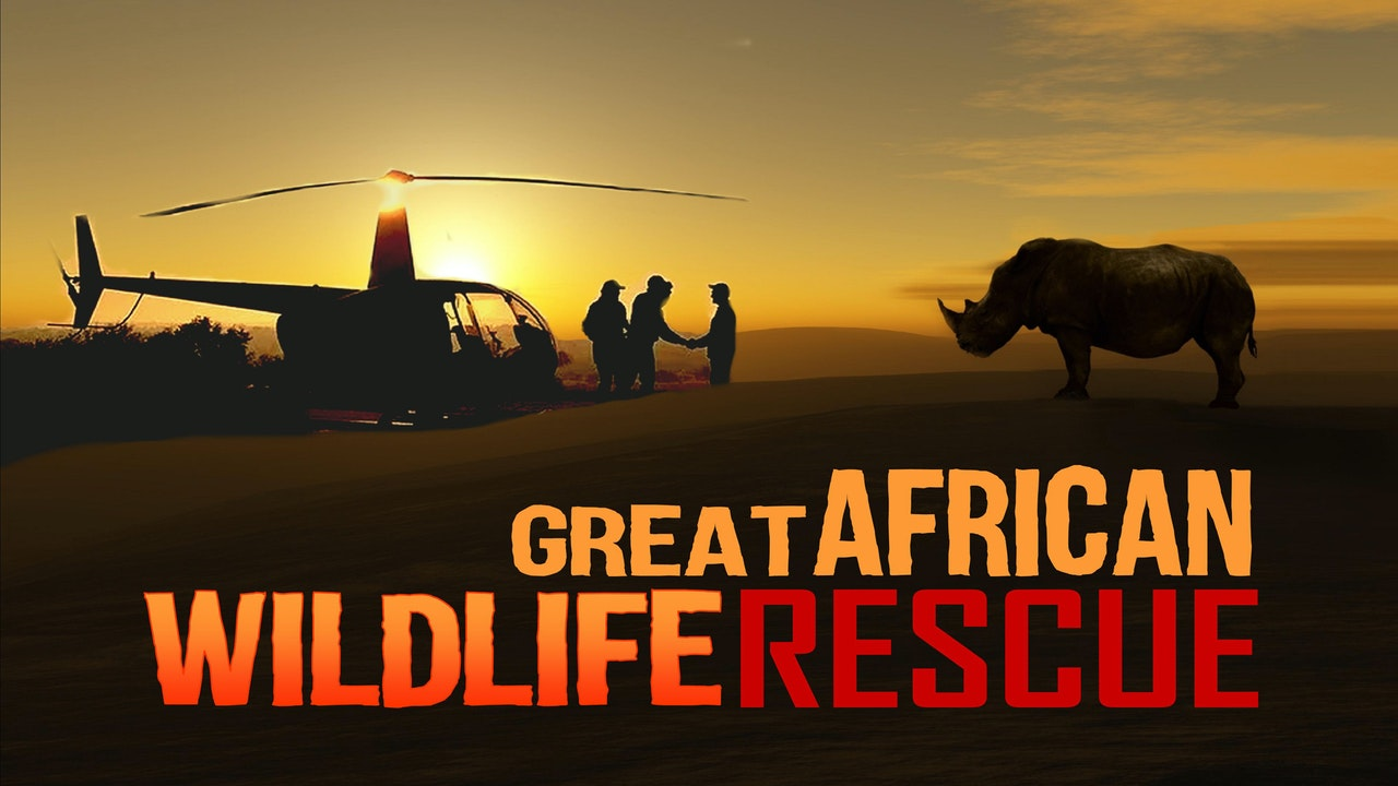 The Great African Wildlife Rescue