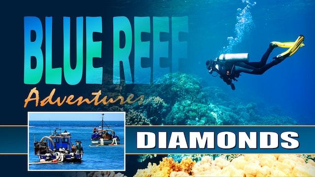 BRA06 - Diamond of the Restless sea