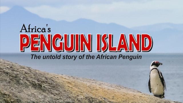 Africa's Penguin Island
