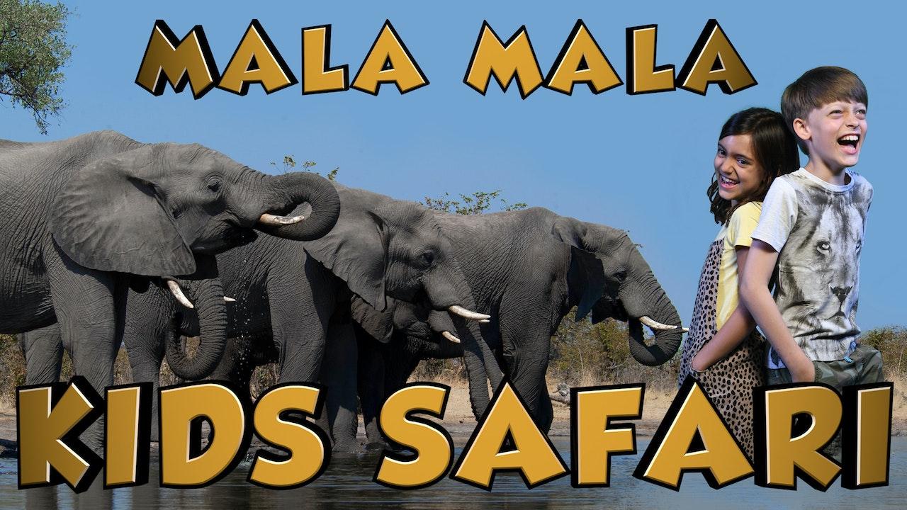 Mala Mala Kids Safari
