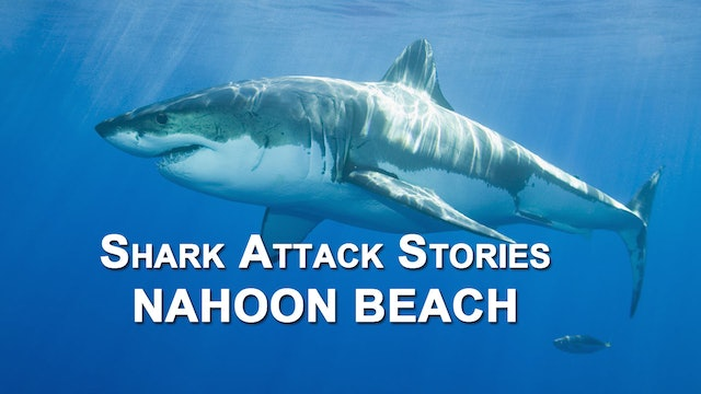Shark Attack Stories - Nahoon Beach.