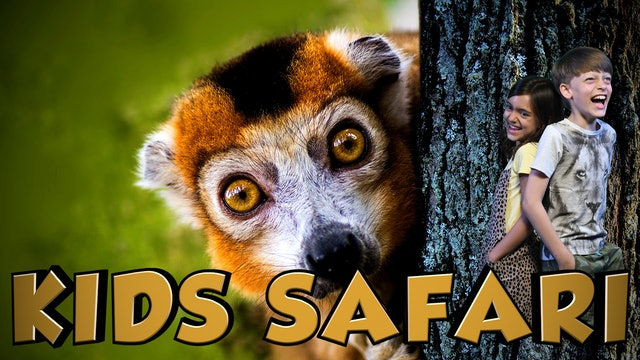 KIDS SAFARI MADAGASCAR - CROWNED & BLACK LEMUR