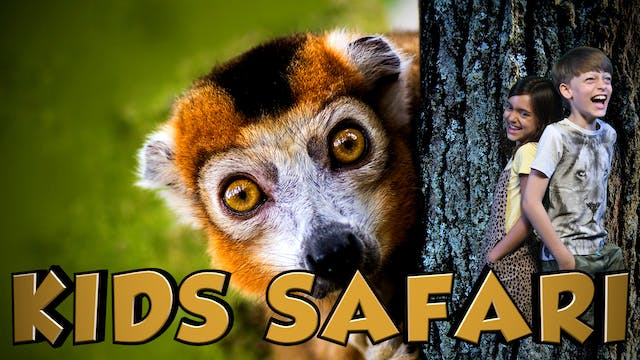 KIDS SAFARI MADAGASCAR - CROWNED & BL...
