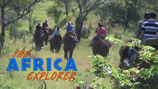 AE10 - Elephant Back Safari