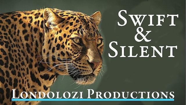 Swift & Silent