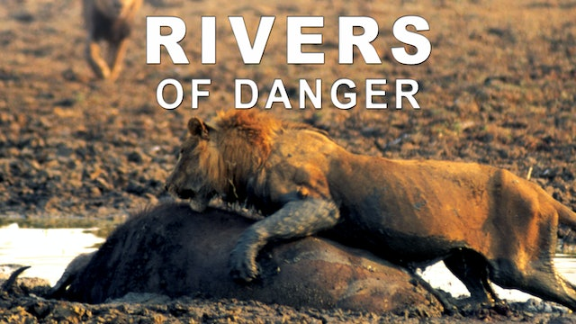 Rivers of Danger