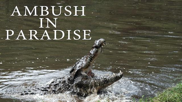 Ambush In Paradise