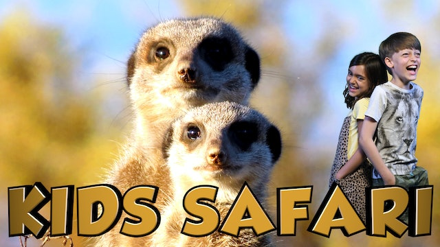 SA KIDS SAFARI -  THE MEERKATS