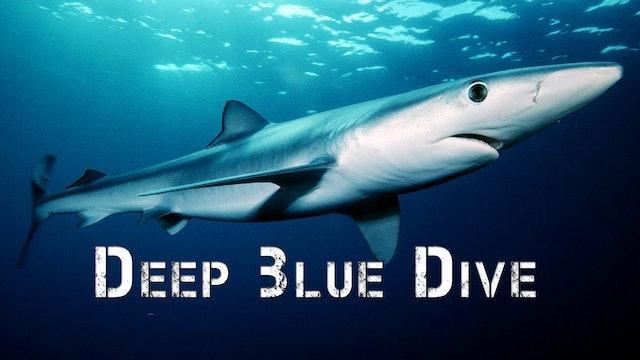 Deep Blue Ocean Dive