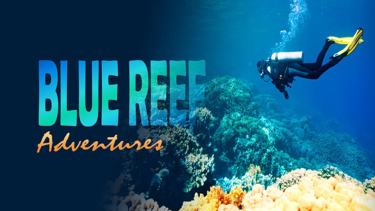 Blue Reef Adventures