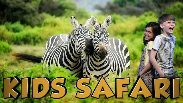 MALA MALA KIDS SAFARI - ZEBRA AND FRIENDS