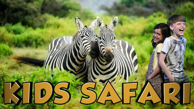 MALA MALA KIDS SAFARI - ZEBRA AND FRI...