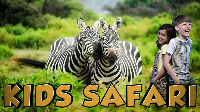 MALA MALA KIDS SAFARI - ZEBRA AND FRI...