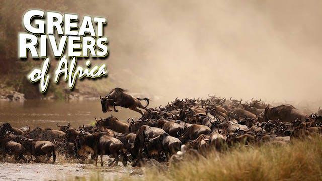 GROA05 - Mara river of strife