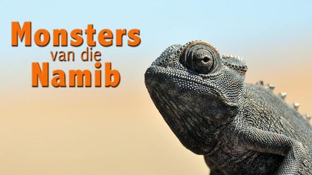 Monsters van die Namib