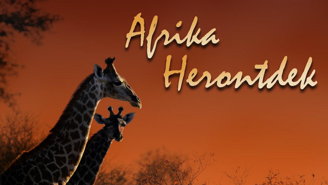 Afrika Herontdek