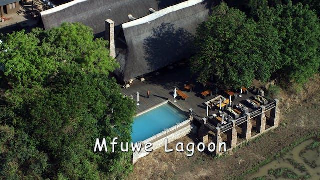 WZ07 - Mfuwe Lagoon