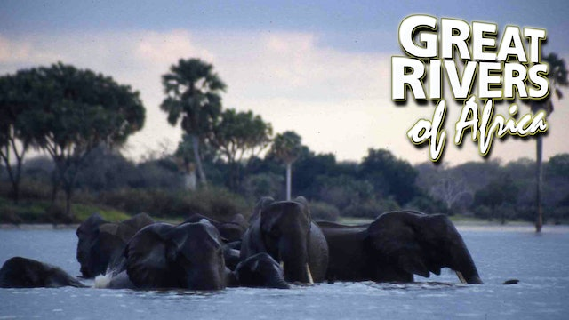 GROA10 - Rufiji the perennial river