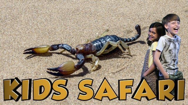 DESERT KIDS SAFARI - DESERT CREATURES