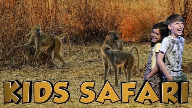 MALA MALA KIDS SAFARI - BABOONS AND BIRDS