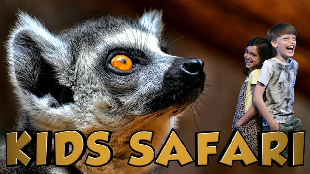 KIDS SAFARI MADAGASCAR - FINDING KING JULIAN