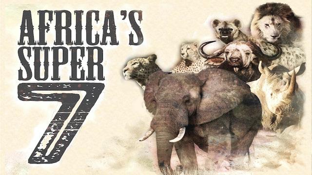 Africa's Super Seven