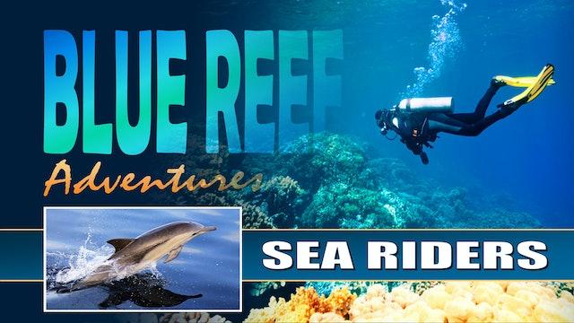 BRA13 - Sea Riders