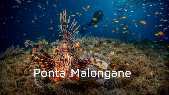 DA07 - Ponta Malongane
