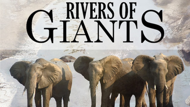 Rivers of Giants