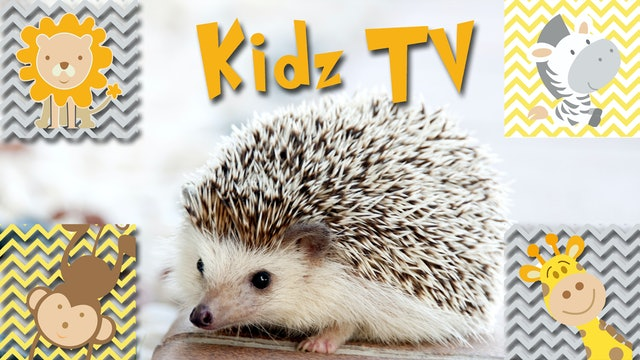 Kidz TV
