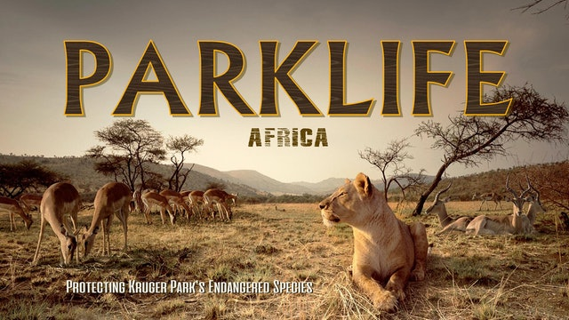 Parklife: Africa