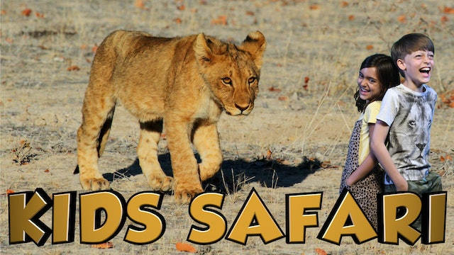 MALA MALA KIDS SAFARI - BIG 5 BABIES