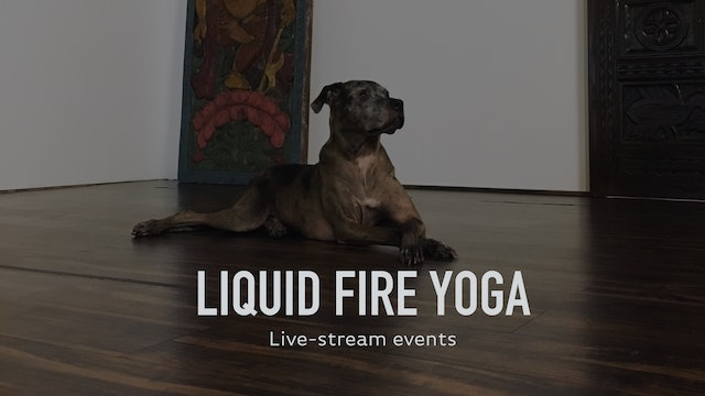 Liquid Fire Yoga LIVE! The Birthday Sequence