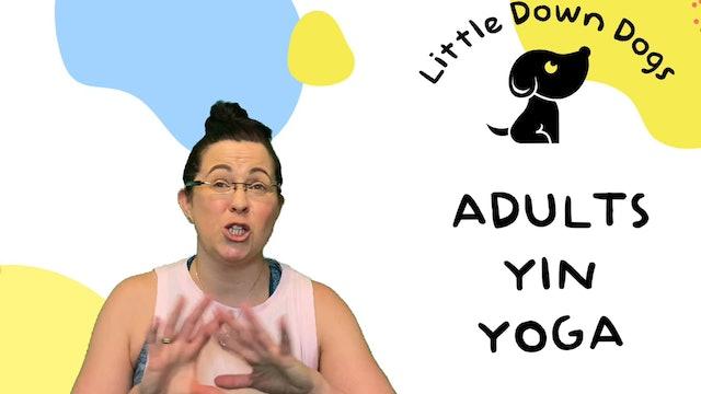 Adults Yin Yoga