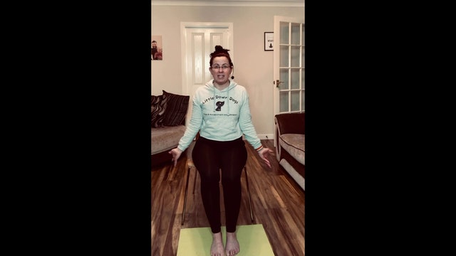 Chair Yoga - Class 5