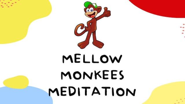 Teen/Tween Meditation (Age 10+)