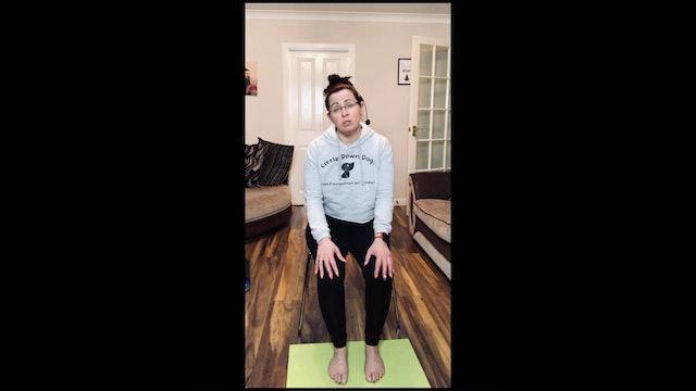 Chair Yoga - Class 2