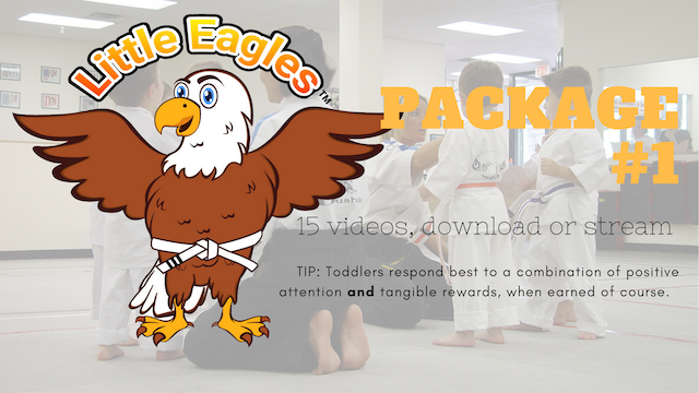 Little Eagles® Martial Arts, Package 1