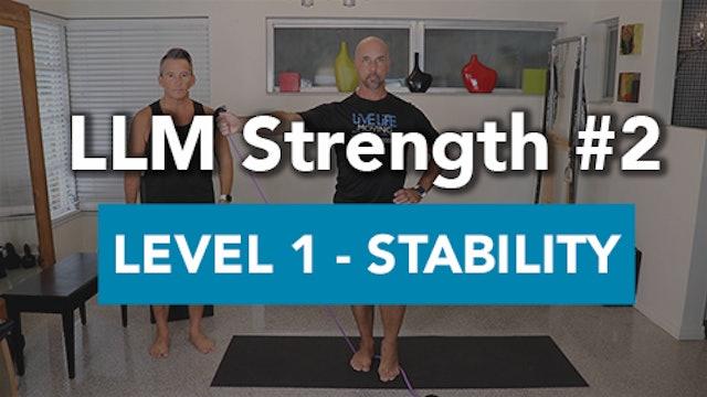 LLM Strength #2 - Level 1 Stability