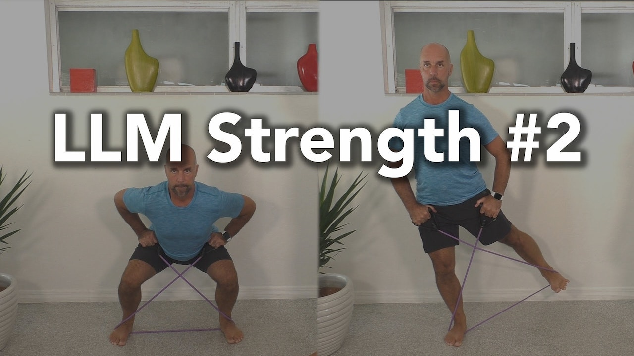 LLM Strength #2 Collection