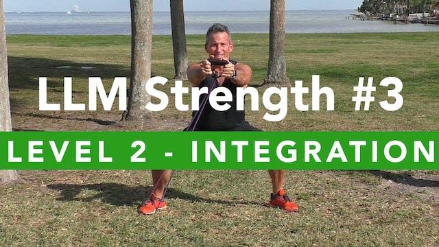 LLM Strength #3 - Level 2 - Integration