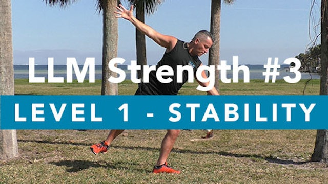 LLM Strength #3 - Level 1 - Stability Circuits