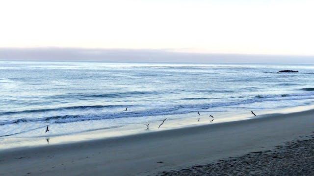Ocean 73