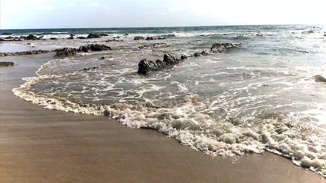 Ocean 65