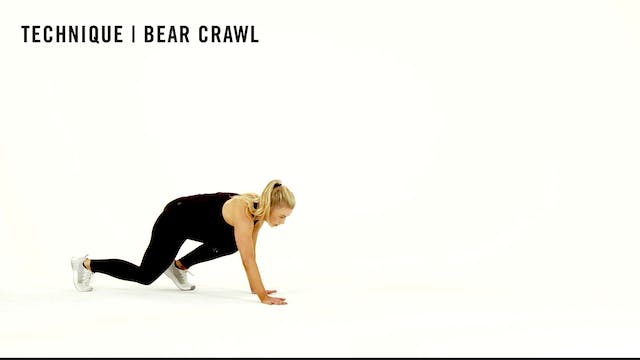LES MILLS TECHNIQUE: Bear Crawl