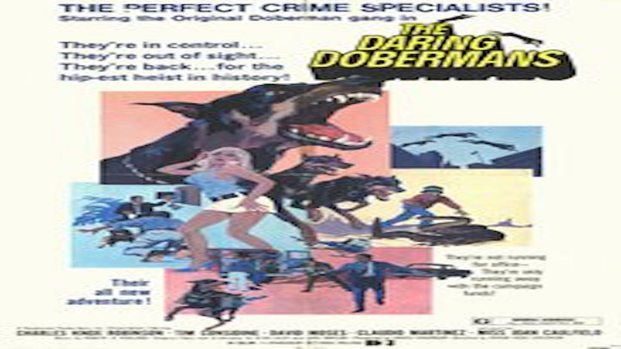 The Daring Dobermans