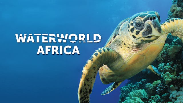 Waterworld Africa
