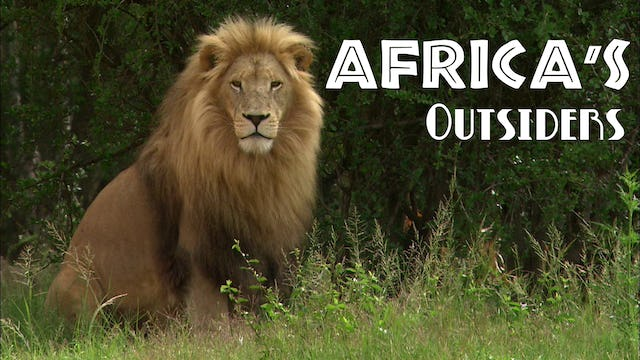 Africas Outsiders