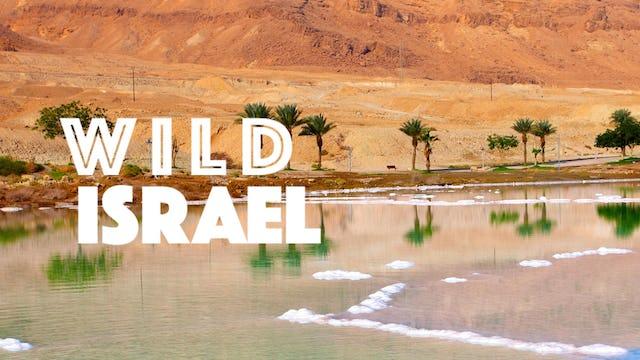 Wild Israel